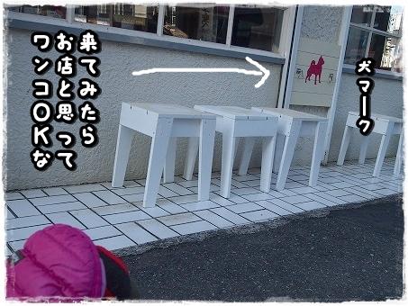 P1182341.jpg