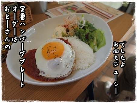 PC070467.jpg