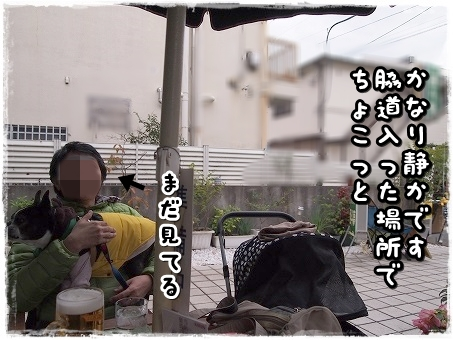 PC080559.jpg