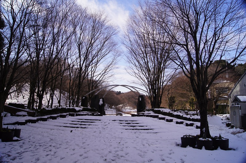 四季の森公園1