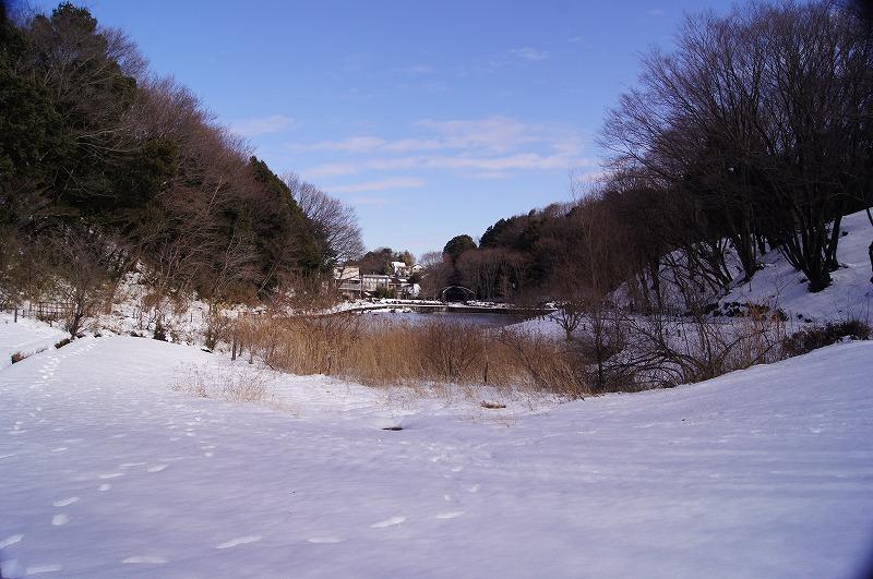 四季の森公園2
