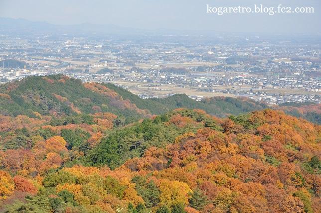 太平山の紅葉(2)