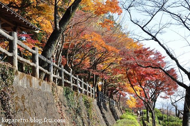 太平山の紅葉(2)3