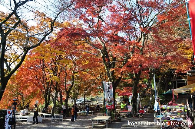 太平山の紅葉(2)4