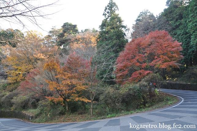 太平山の紅葉(2)5