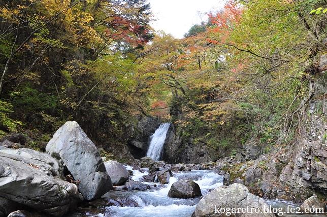 大芦渓谷の紅葉