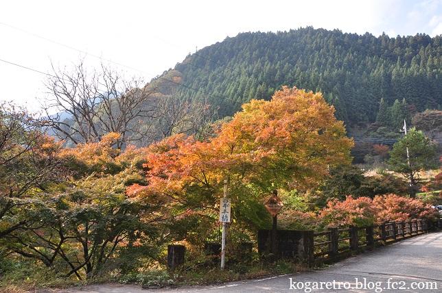 大芦渓谷の紅葉3