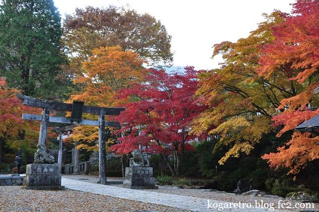 古峯神社の紅葉2