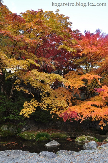 古峯神社の紅葉3