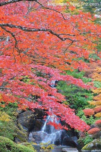 古峯園の紅葉3