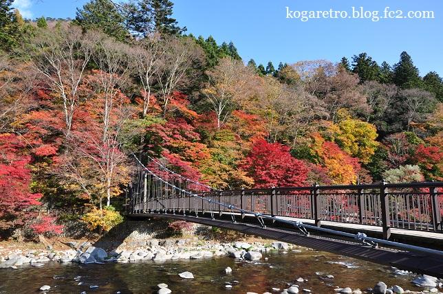 紅の吊り橋の紅葉3