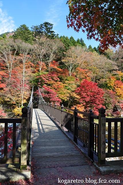 紅の吊り橋の紅葉