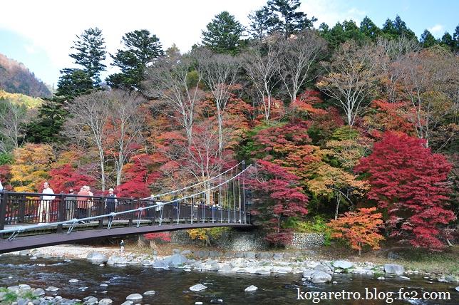 紅の吊り橋の紅葉5