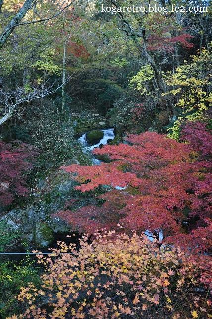 花貫渓谷の紅葉5