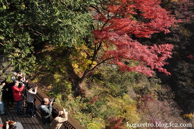 袋田の滝の紅葉2