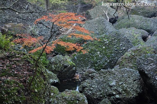 袋田の滝の紅葉5