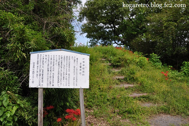 渡良瀬遊水地の釣鐘2