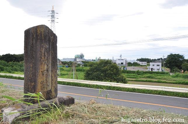 渡良瀬遊水地と台風2