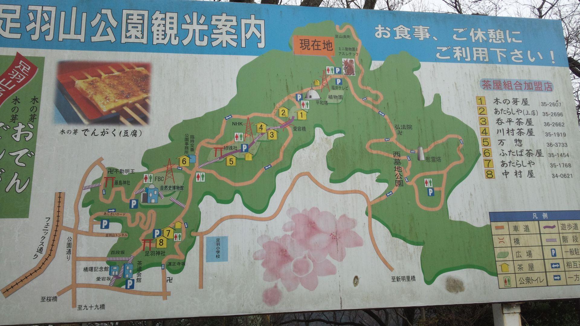 asuwayama02.jpg