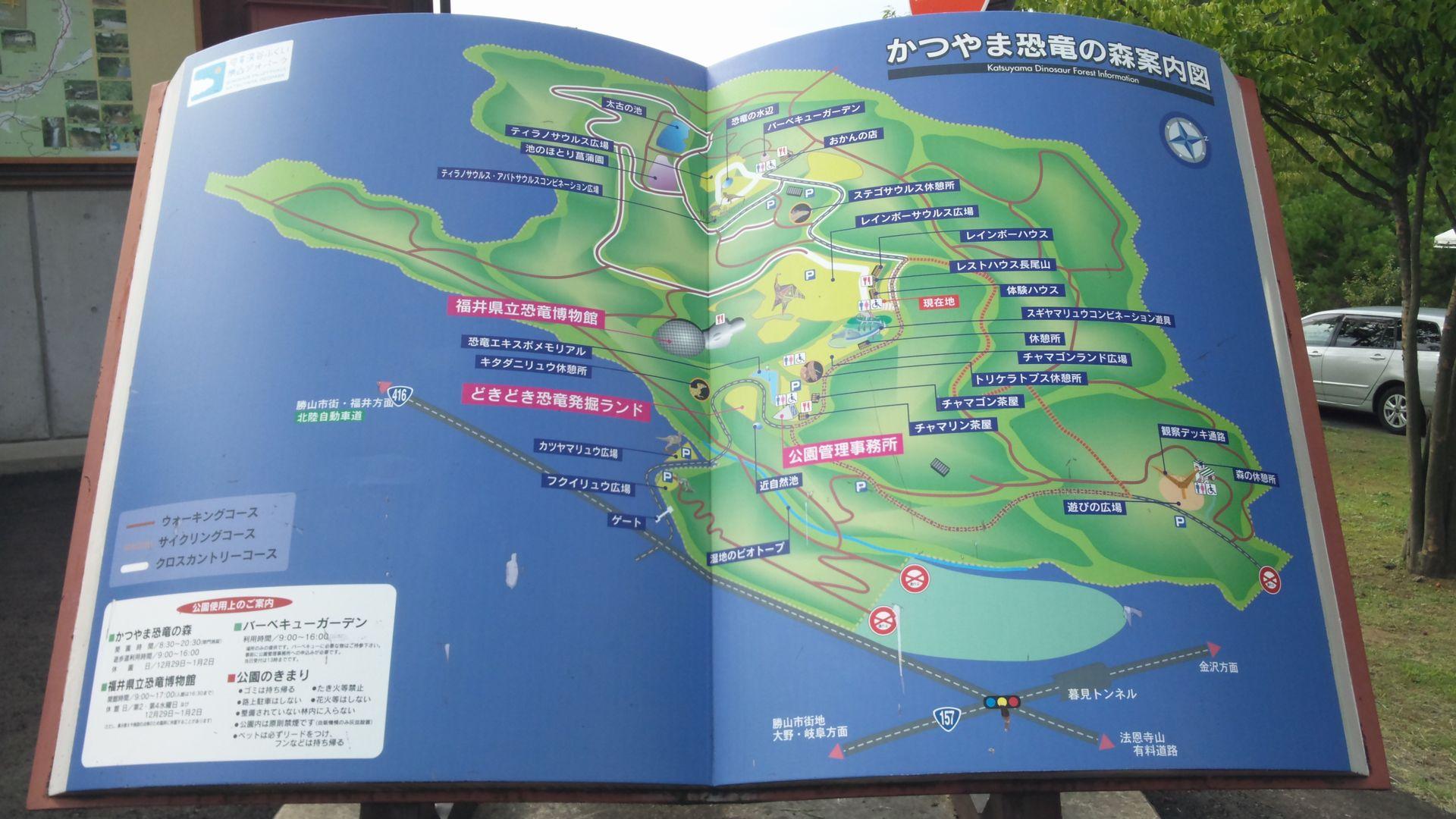 katuyamaj04.jpg