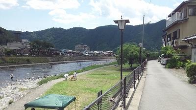 nakagawara20.jpg