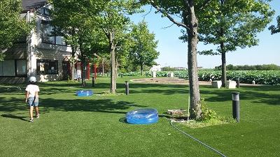 suigopark22.jpg