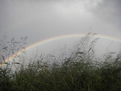 10月2日東の空に虹