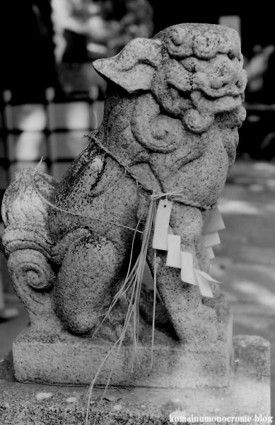 中井神社(大阪市東住吉区針中野)5