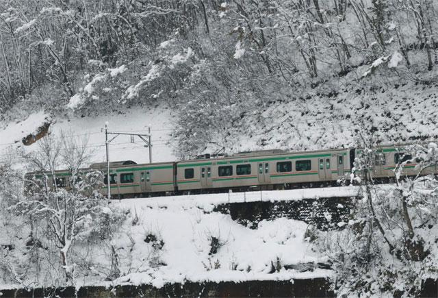 31216-c.jpg