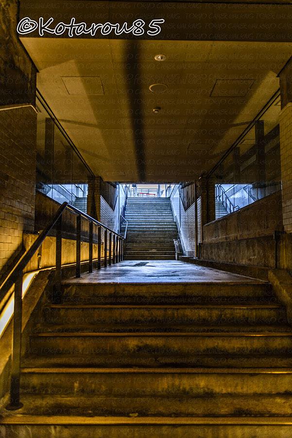 プラットホームへの階段 20141108
