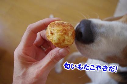 宇宙食 4