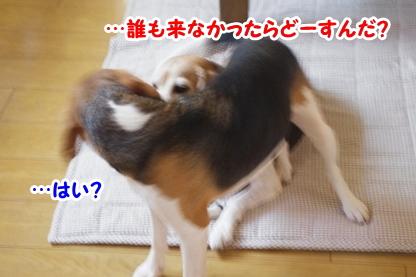 お知らせ 6