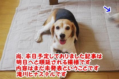 お知らせ 3