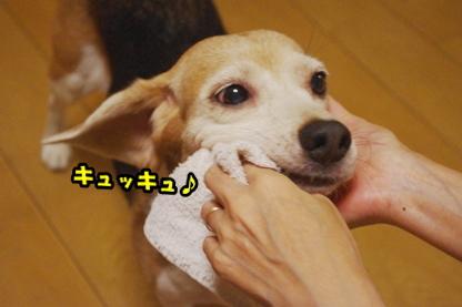 歯磨き 1