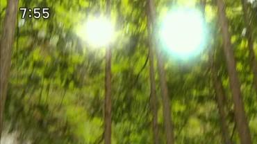 vlcsnap-2013-06-26-19h10m22s11.jpg