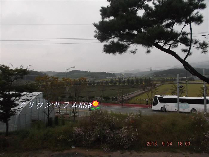 0924061_R.jpg