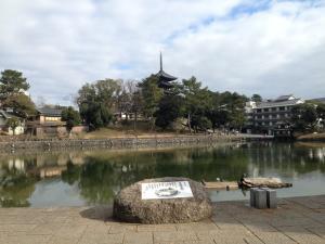 sarusawa0105_convert_20140105113452.jpg