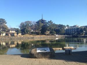 sarusawa0107_convert_20140107111341.jpg