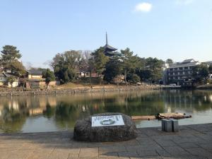 sarusawa0111_convert_20140111113536.jpg