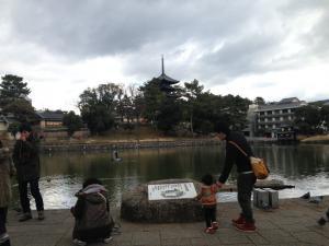 sarusawa0113_convert_20140113112556.jpg