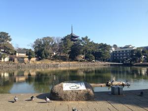 sarusawa0114_convert_20140114121225.jpg