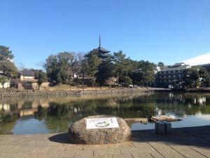 sarusawa0115_convert_20140115123055.jpg