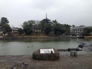sarusawa1227_convert_20131227112141.jpg