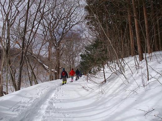 yukikisaragi 215