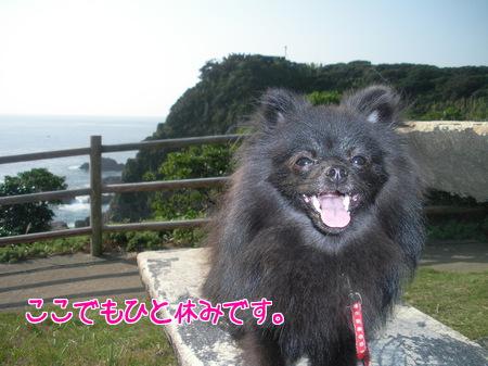 asizuri-05.jpg