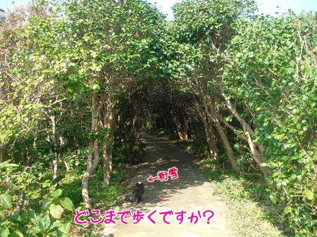 asizuri-07.jpg