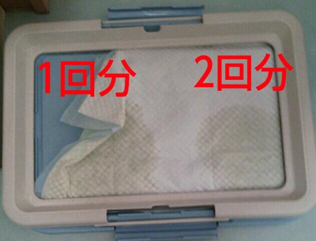 PhotoHenshu_20130513211945.jpg