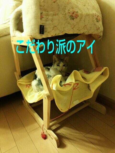 PhotoHenshu_20130513212422.jpg