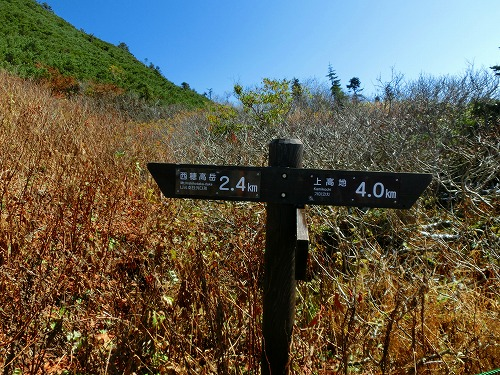 NishihoCIMG2870.jpg