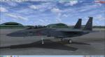 IRIS F15Enewリペイント1